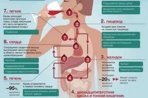 Почему болит желудок после алкоголя: что делать, как лечить