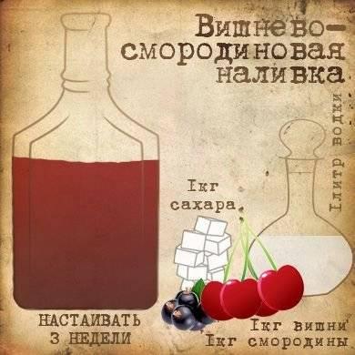 Домашний вермут: 85 фото простых рецептов и правила употребления вермута