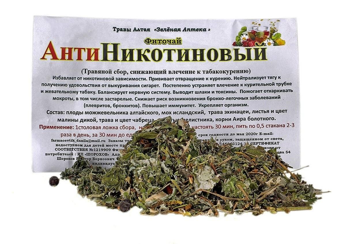 Какие травы помогают бросить курить?
