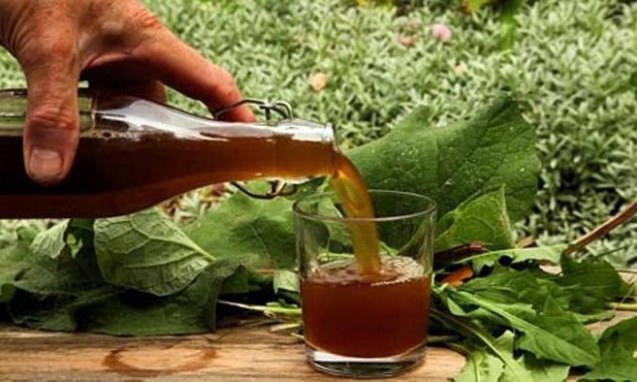 От чего помогает настойка из одуванчиков на одеколоне, спирту или водке? Как сделать лекарственное средство?