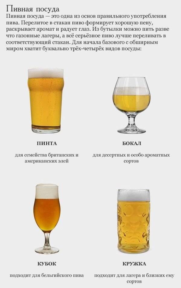Пиво и эль: описание и чем они отличаются? | в чем разница