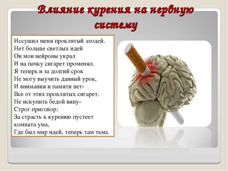 Влияние курения на мозг человека: узнайте как вредная привычка убивает вашу память и умственные способности