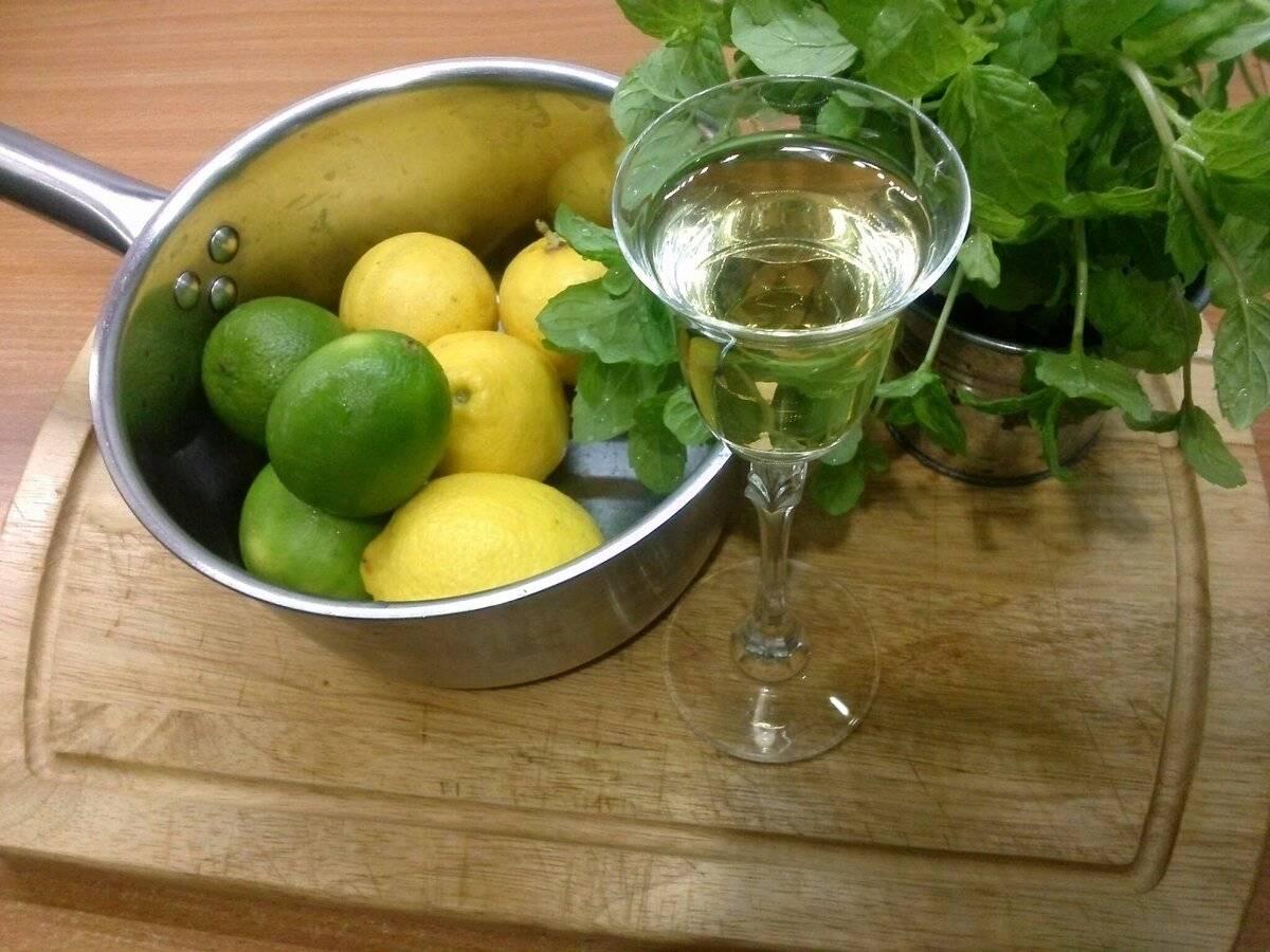 Свойства и рецепты изготовления мятных настоек на самогоне. три удачных рецепта питьевых настоек с мятой на водке (спирте, самогоне)