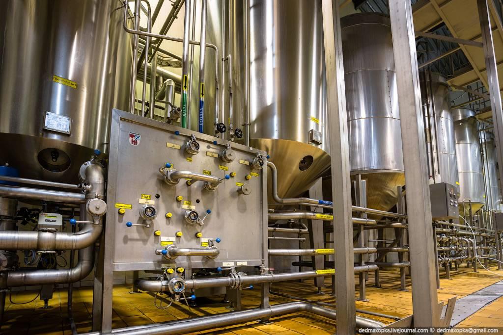 Технология производства пива: особенности, оборудование, процессы