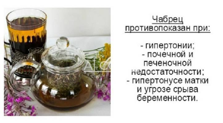 Чабрец от алкоголизма (отзывы): как применять без ведома больного, отвар с полынью и золототысячником