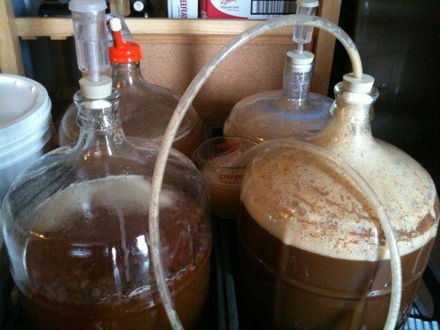 Рецепты приготовления браги и самогона из березового сока в домашних условиях