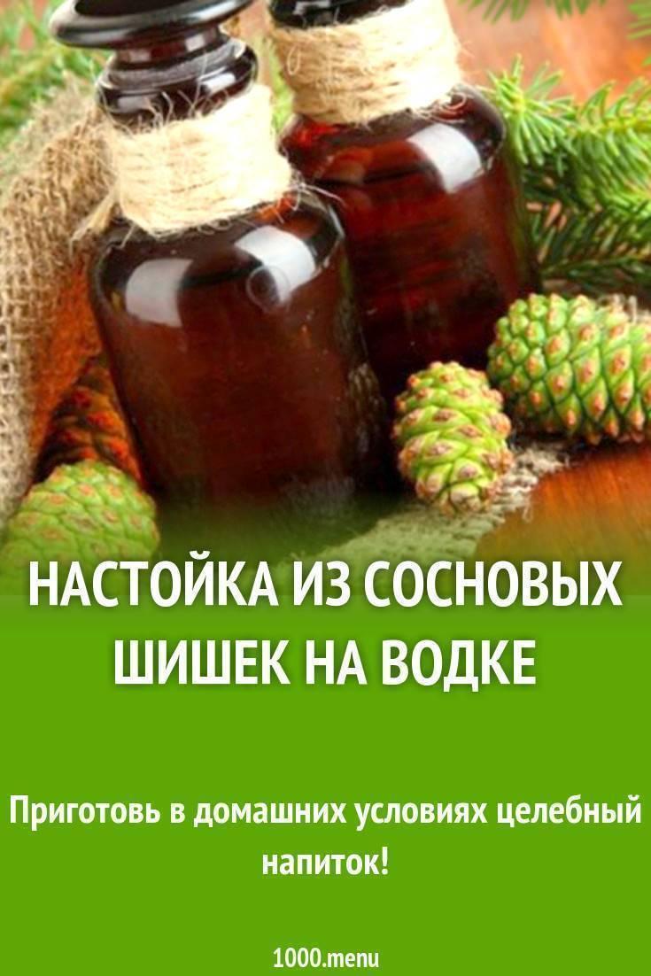 Сосновые шишки - настойка на водке, ее лечебные свойства