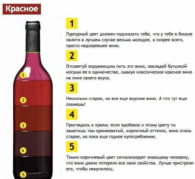 Хранение шампанского: срок годности в закрытой и откупоренной бутылке