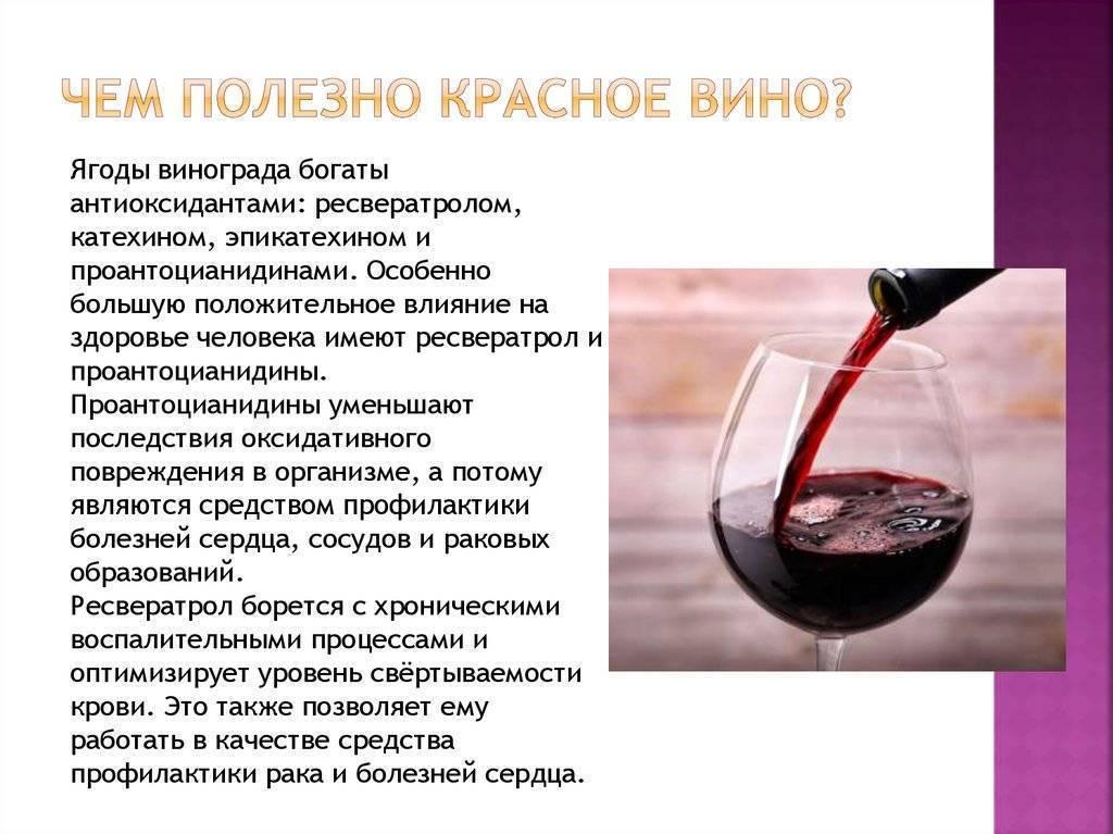 Красное вино - какая польза и вред для организма и здоровья человека, полезно ли и чем
