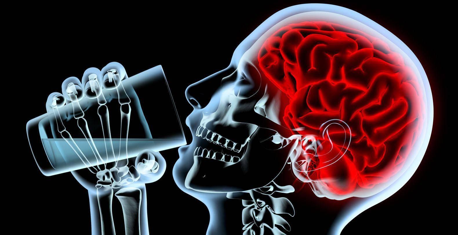 Как алкоголь влияет на мозг человека? - brainapps.ru