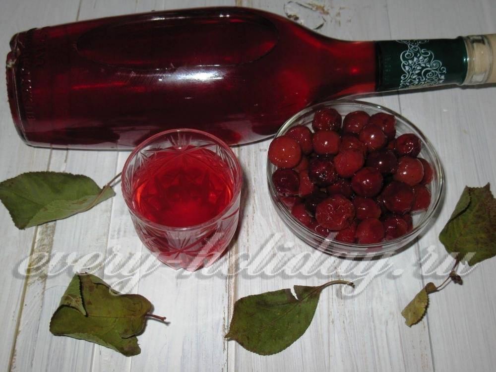Рецепты ликеров из вишни. с привкусом лета на губах.