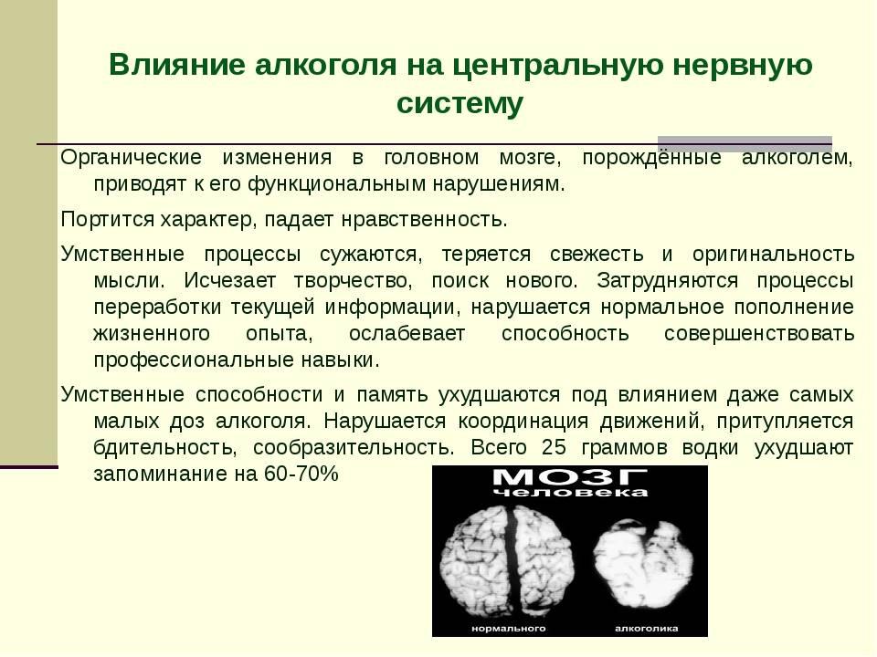 Восстановление нервной системы после алкоголя: препараты для лечения нейропатии, отзывы врачей
