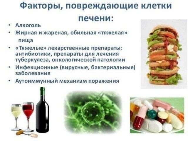 Можно ли пить алкоголь, если принимать эссенциале форте, совместимость эссенциале форте и алкоголя