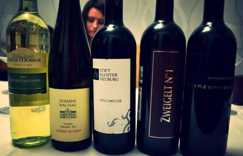 Обзор видов и марок австрийских вин