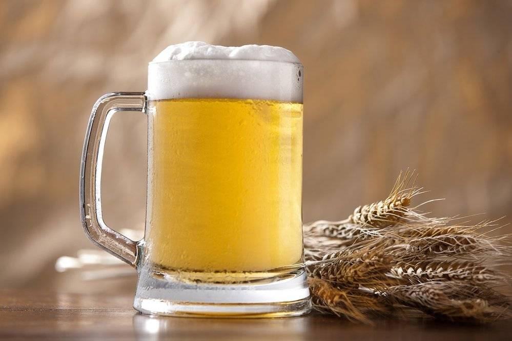 Польза и вред пива для организма мужчин и женщин, состав, калорийность