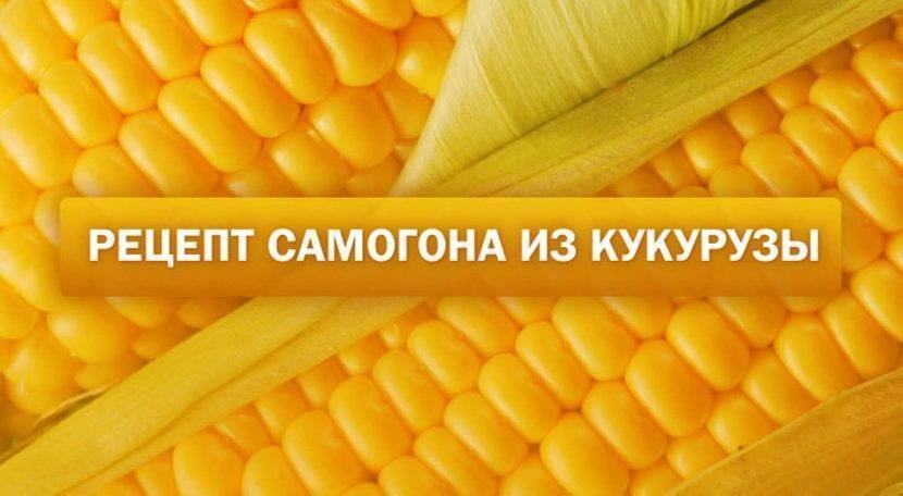 Рецепт браги для самогона из кукурузы в домашних условиях