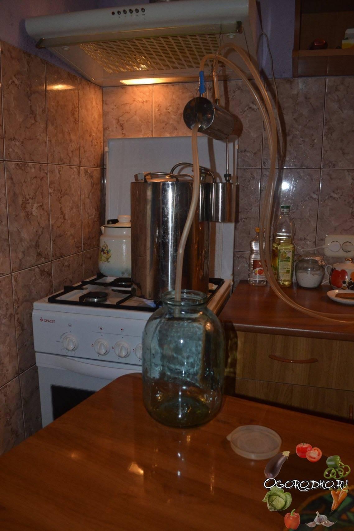 Домашняя чача из винограда – простые рецепты. готовим кристально чистую чачу из винограда в домашних условиях - автор екатерина данилова - журнал женское мнение