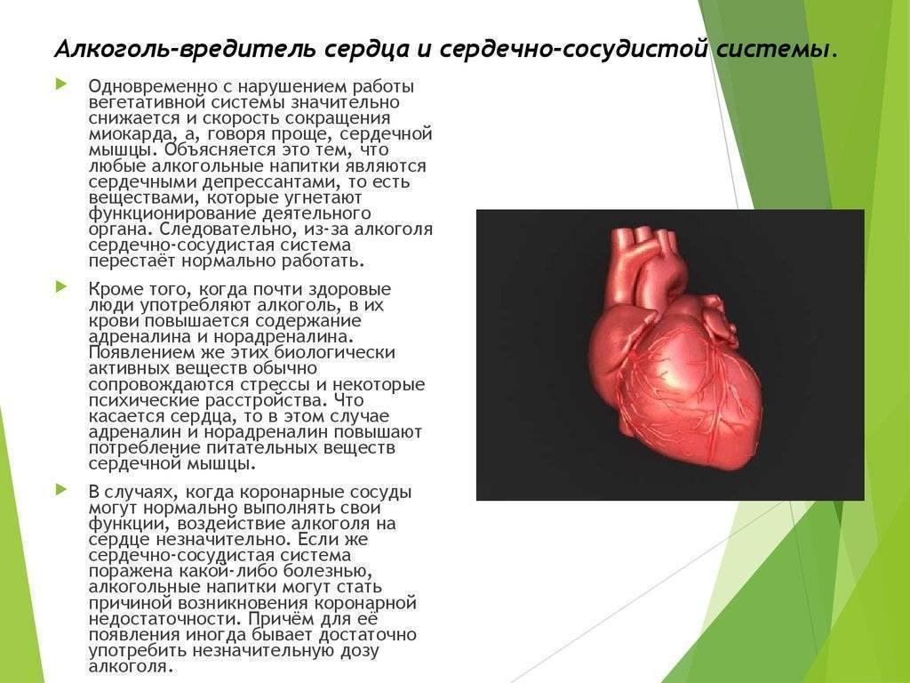 Какие алкогольные напитки можно употреблять при стенокардии — заболевания сердца