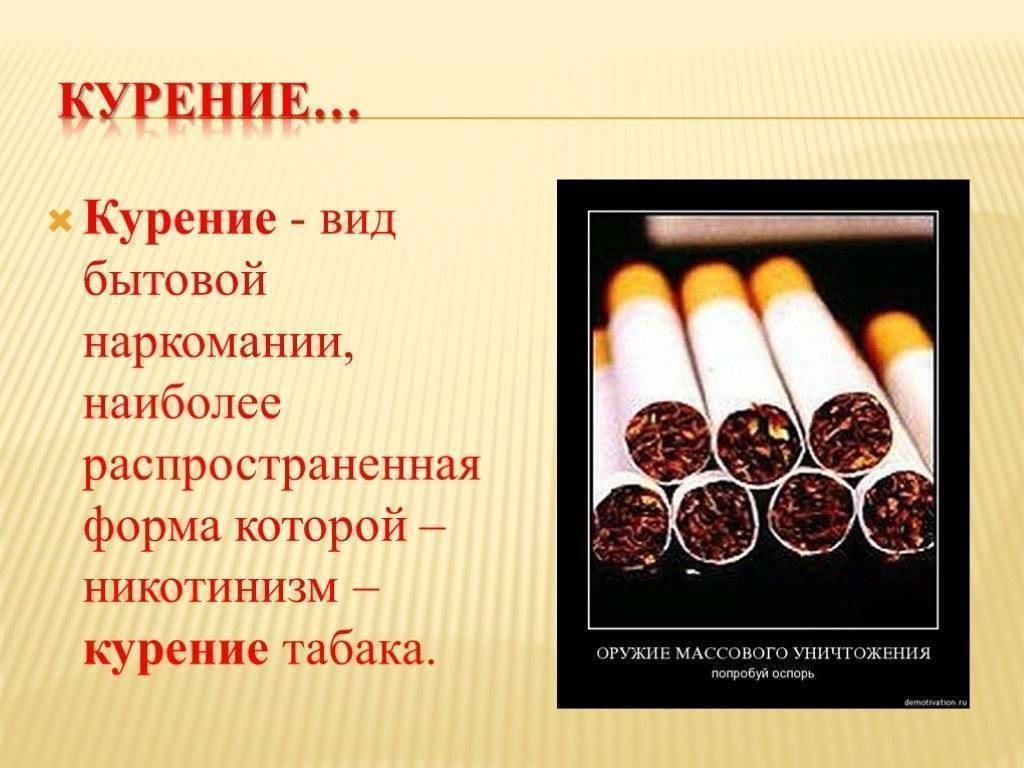 5 марок сигарет для тех, кто хочет курить настоящий табак без добавления опасных присадок