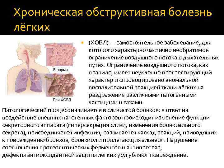 Признаки, классификация и профилактика основных заболеваний легких