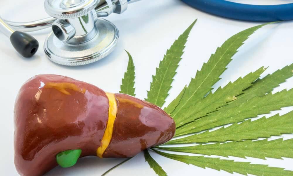 Влияет ли курение на печень человека? советы врачей | za-rozhdenie.ru