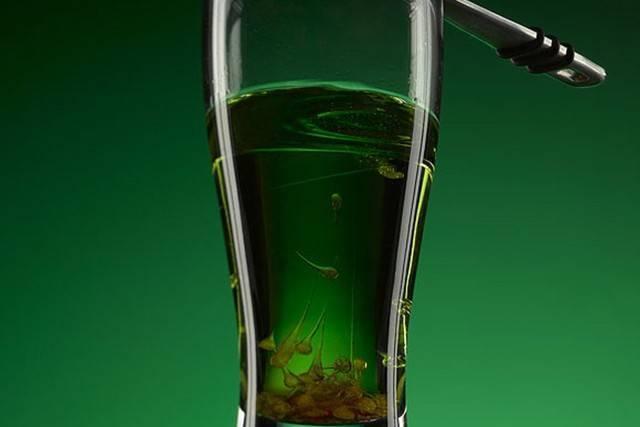 Абсент: как пить в домашних условиях, чем закусывать? можно ли пить абсент чистым - samchef.ru