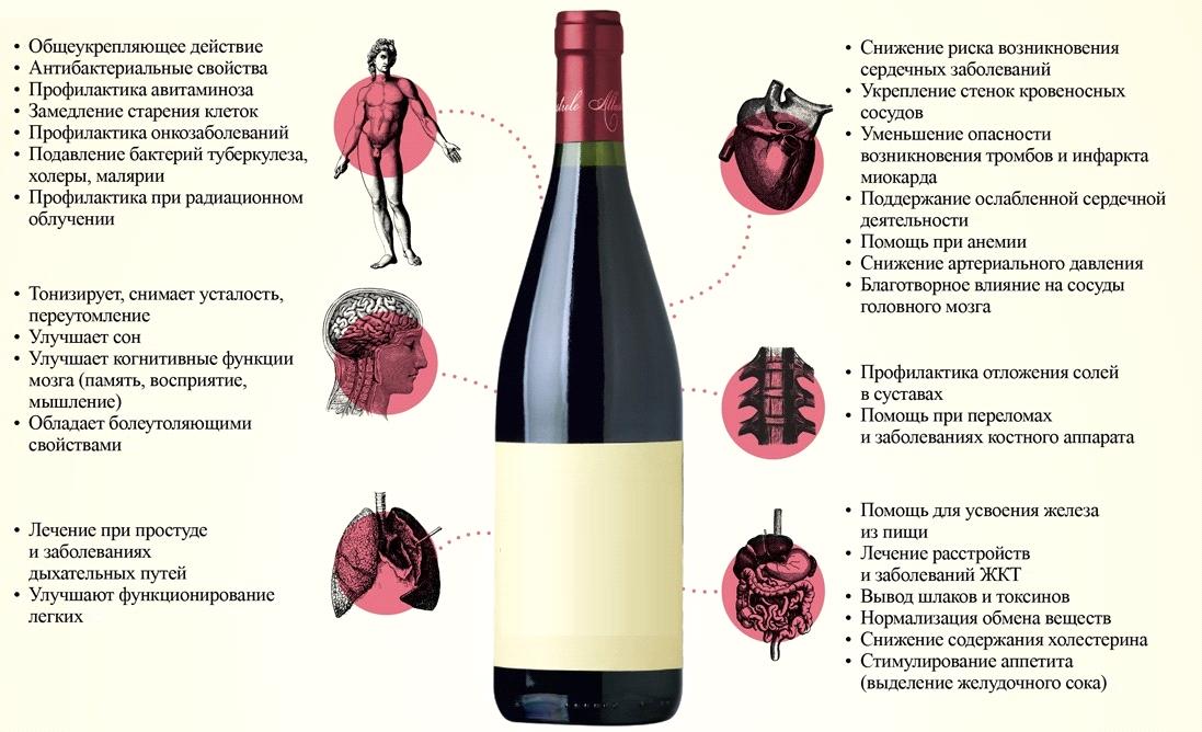 Какой алкоголь понижает давление, расширяет или сужает сосуды
