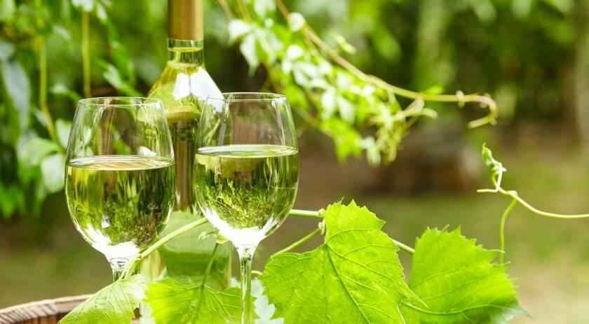 Как сделать шампанское из вина в домашних условиях. делаем шампанское из вина в домашних условиях
