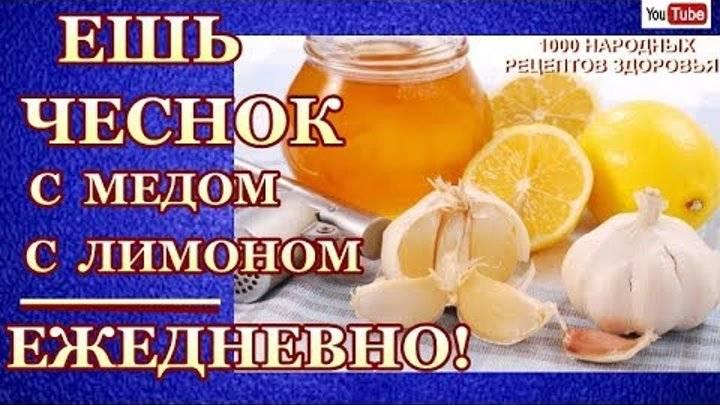 Чистка сосудов чесноком и лимоном – как проводить процедуру? отзывы врачей