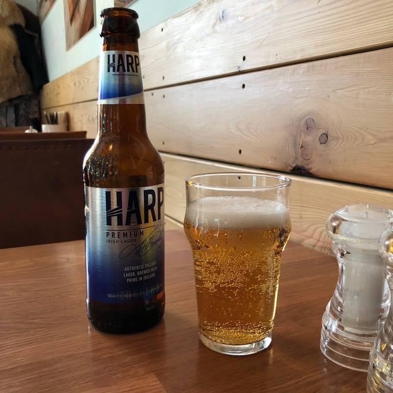 Пиво харп (harp) — особенности, различие вкуса, виды и история