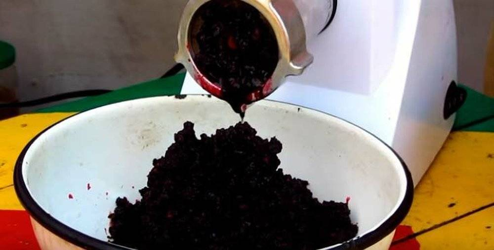 Готовим вино из рябины черноплодной в домашних условиях