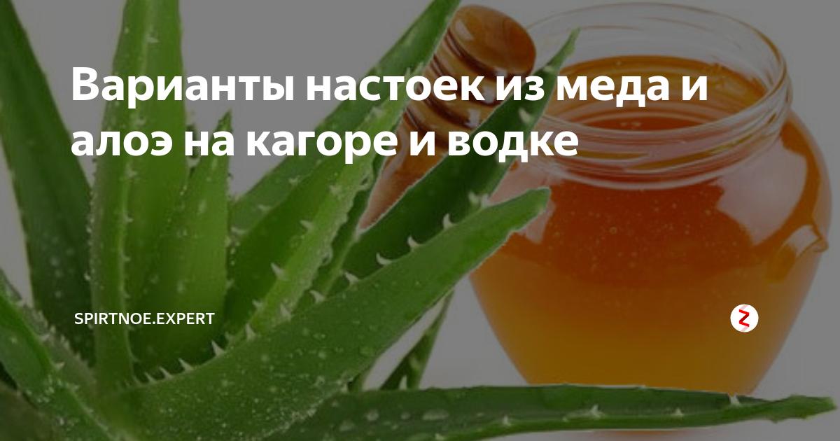 Состав, свойства и применение настойки алоэ на водке. рецепты приготовления лечебного средства