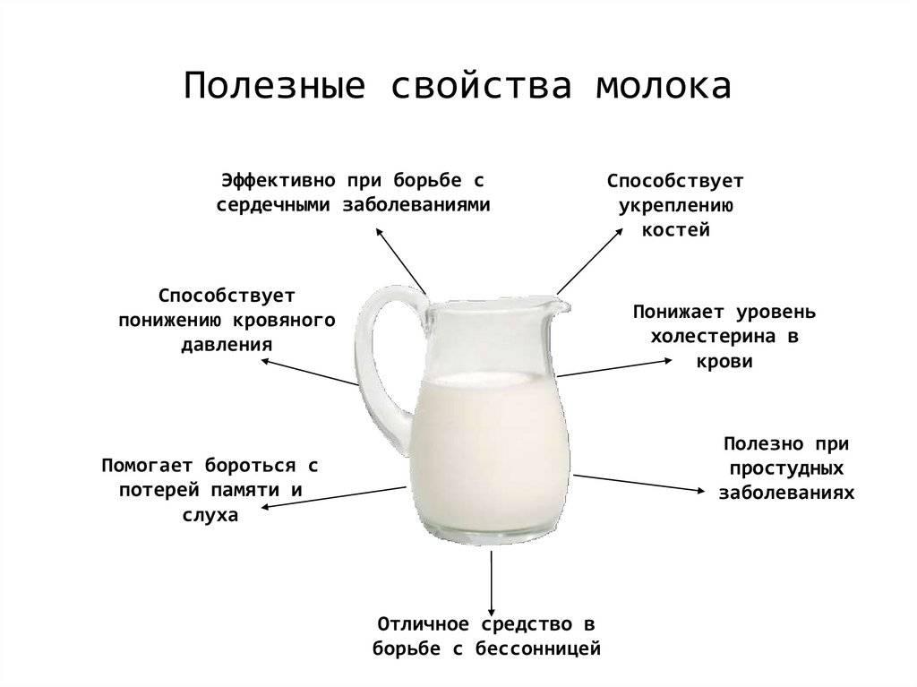 Молоко с похмелья: польза иил вред, можно ли пить | spravki1.ru
