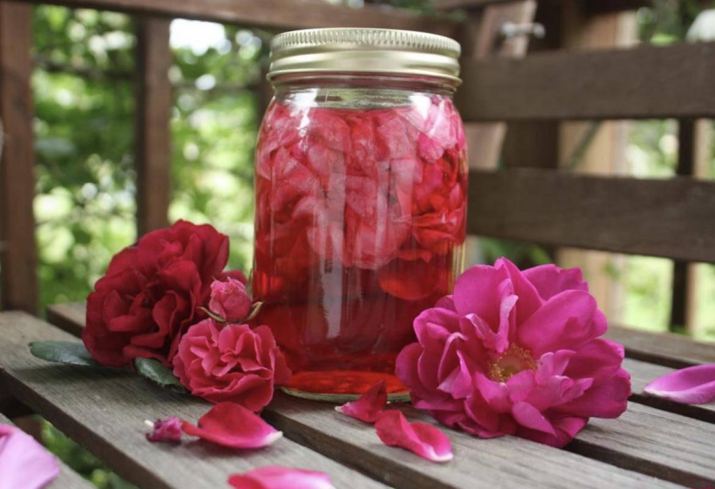 Настойка излепестков роз— особенности, лечебные свойства, рецепты иприменение