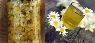 Настойка ромашки на спирту: рецепты чудодейственного средства