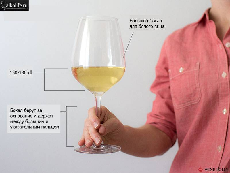 Посуда для алкоголя: каждому напитку - свой бокал | fresh.ru
