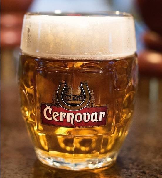Калорийность и состав темного пива