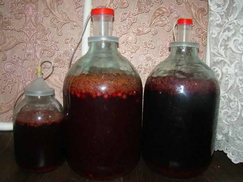 Вино из изюма в домашних условиях: 10 лучших пошаговых рецептов с фото + как приготовить винную закваску