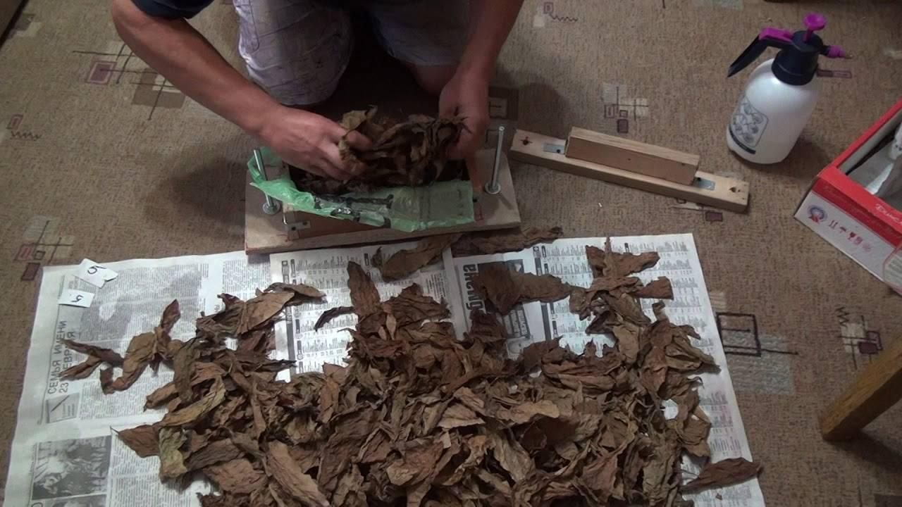 Как сушить и ароматизировать табак для курения в домашних условиях?