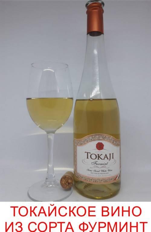 Путеводитель по виноделию венгерского региона токай: вино королей и король среди вин