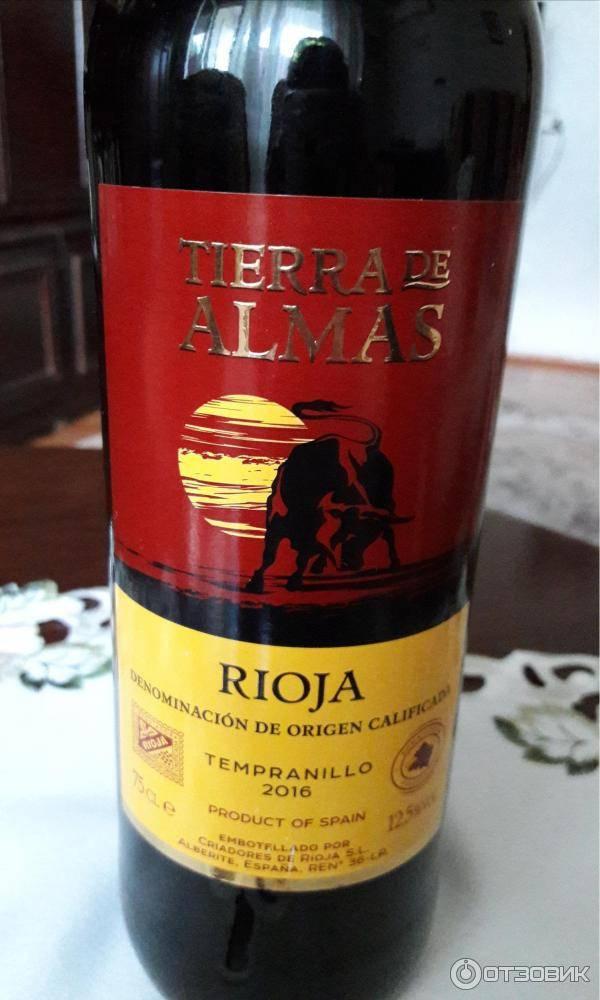 Испанское вино tempranillo (темпранильо): что это за сорт винограда, его полное описание и характеристики