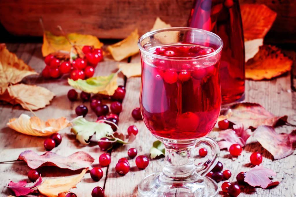 Рецепт домашнего клюквенного вина — изучаем по пунктам