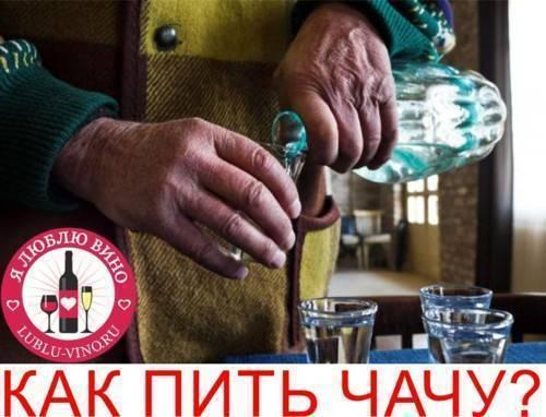Что такое чача? необычные коктейли с грузинской водкой