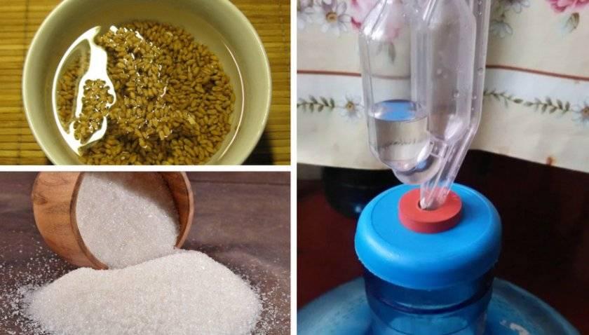Зерновая брага: рецепты и особенности