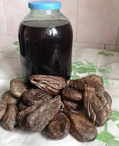 Инструкция приготовления настойки из бобровой струи