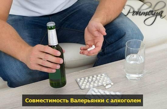 Валериана и алкоголь совместимость