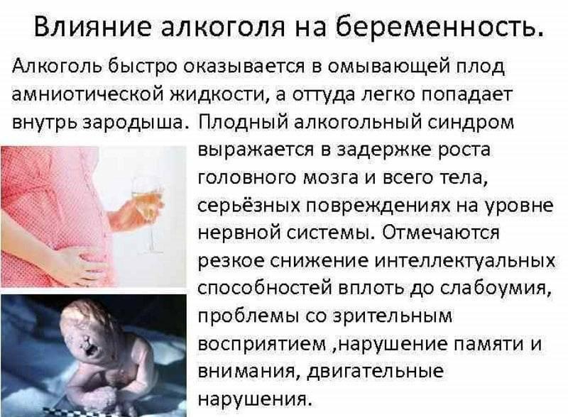 Алкоголь и беременность. как зачать и родить здорового ребёнка?