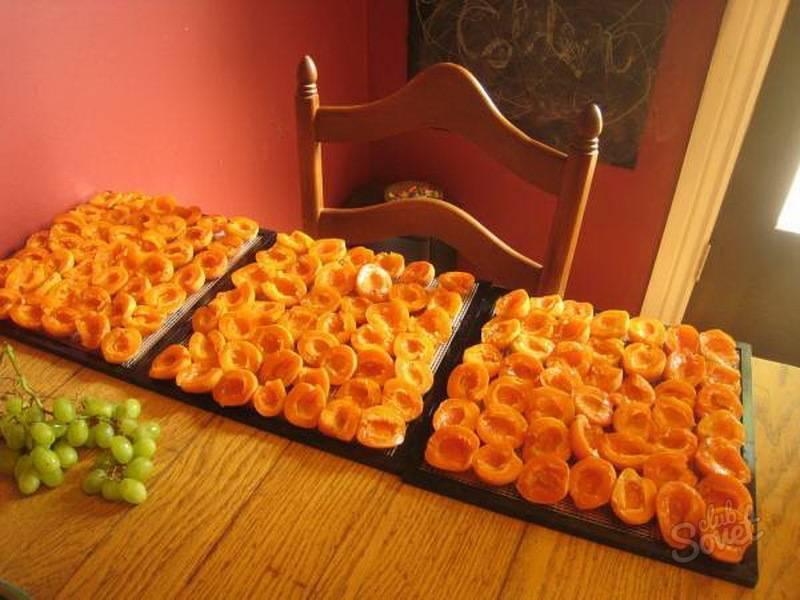 Как приготовить брагу из абрикосов в домашних условиях
