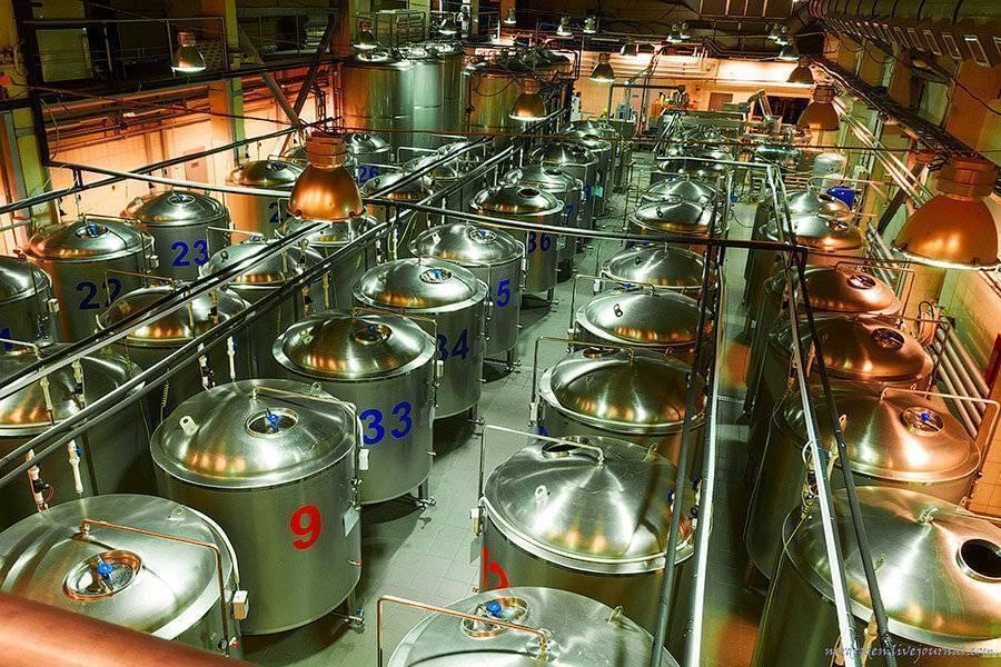 Производство пива: как делают пиво и весь процесс пивоварения | pivo.net.ua