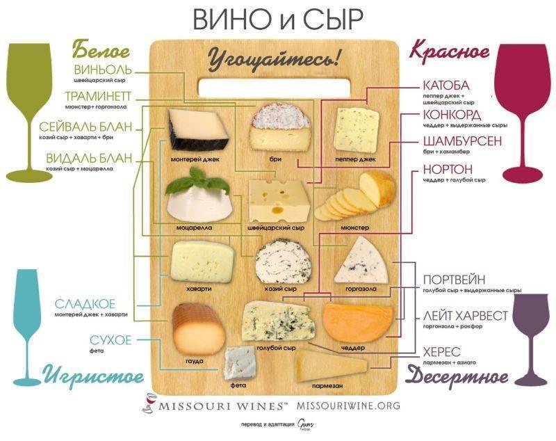 Как правильно сочетать сыр и вино   ovechkamarket news   яндекс дзен